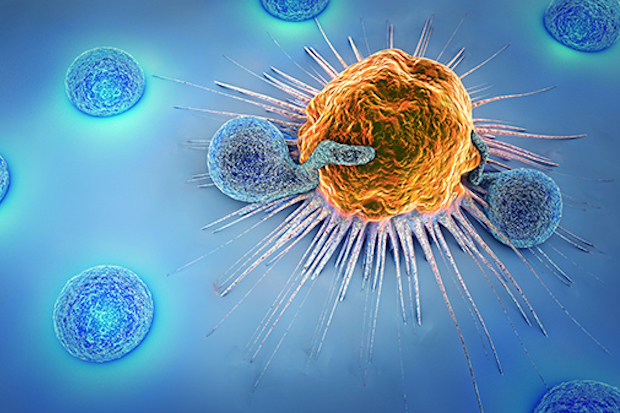T_Cell_attacking_Cancer-RS
